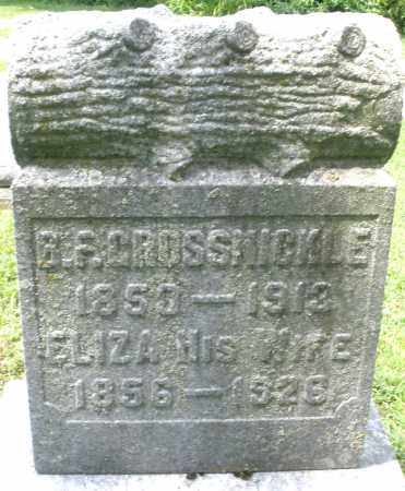 GROSSNICKLE, ELIZA - Montgomery County, Ohio | ELIZA GROSSNICKLE - Ohio Gravestone Photos