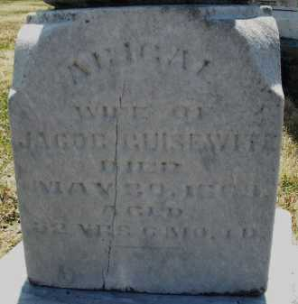 GUISEWITE, ABIGAL - Montgomery County, Ohio | ABIGAL GUISEWITE - Ohio Gravestone Photos