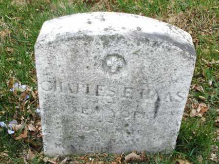 HAAS, CHARLES  E. - Montgomery County, Ohio   CHARLES  E. HAAS - Ohio Gravestone Photos