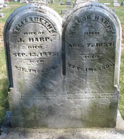HARP, ELIZABETH - Montgomery County, Ohio | ELIZABETH HARP - Ohio Gravestone Photos