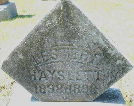 HAYSLETT, LESTER - Montgomery County, Ohio | LESTER HAYSLETT - Ohio Gravestone Photos