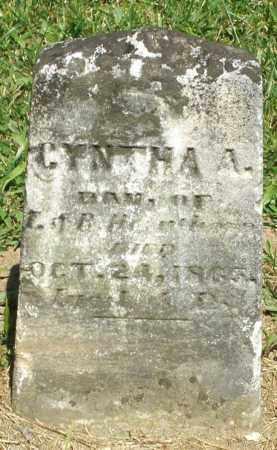 HEETER, CYNTHA A. - Montgomery County, Ohio   CYNTHA A. HEETER - Ohio Gravestone Photos