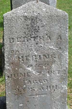 HERING, BERTHA A. - Montgomery County, Ohio | BERTHA A. HERING - Ohio Gravestone Photos