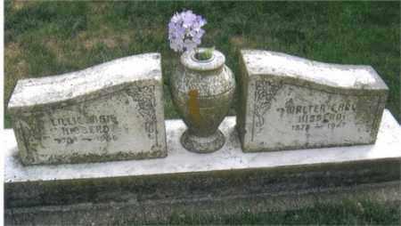 WASKEY HIBBERD, LILLIE - Montgomery County, Ohio | LILLIE WASKEY HIBBERD - Ohio Gravestone Photos