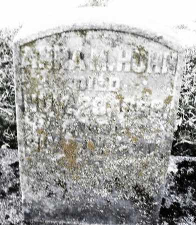 HOHN, ANNA - Montgomery County, Ohio | ANNA HOHN - Ohio Gravestone Photos