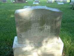 "HOKE, SARAH ANN ""SALLIE"" - Montgomery County, Ohio | SARAH ANN ""SALLIE"" HOKE - Ohio Gravestone Photos"