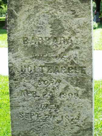 HOLTZAPPLE, BARBARA - Montgomery County, Ohio   BARBARA HOLTZAPPLE - Ohio Gravestone Photos