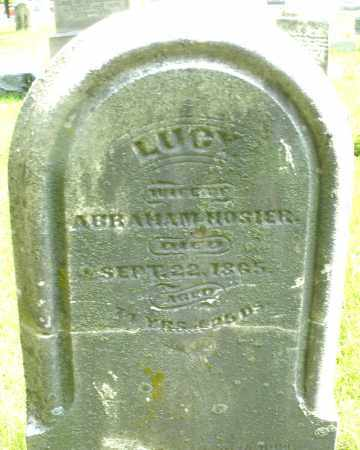 HOSIER, LUCY - Montgomery County, Ohio | LUCY HOSIER - Ohio Gravestone Photos