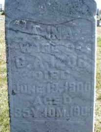 IZOR, ANNA - Montgomery County, Ohio | ANNA IZOR - Ohio Gravestone Photos