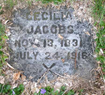 JACOBS, CECILIA - Montgomery County, Ohio | CECILIA JACOBS - Ohio Gravestone Photos