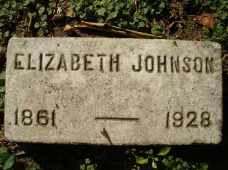 JOHNSON, ELIZABETH - Montgomery County, Ohio | ELIZABETH JOHNSON - Ohio Gravestone Photos