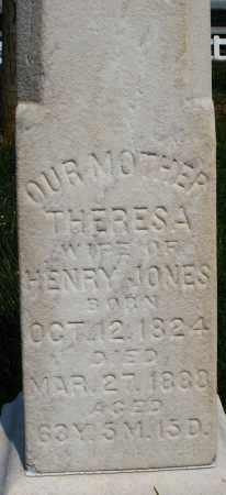 JONES, THERESA - Montgomery County, Ohio | THERESA JONES - Ohio Gravestone Photos
