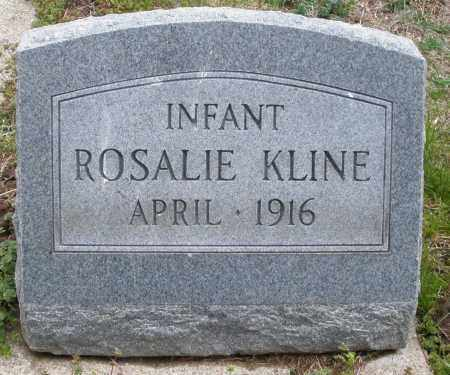 KLINE, ROSALIE INFANT - Montgomery County, Ohio   ROSALIE INFANT KLINE - Ohio Gravestone Photos