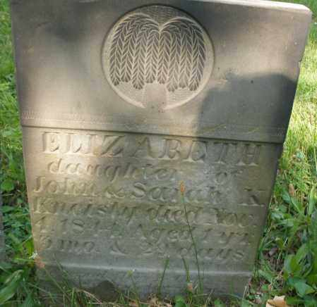 KNEISLY, ELIZABETH - Montgomery County, Ohio   ELIZABETH KNEISLY - Ohio Gravestone Photos