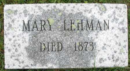LEHMAN, MARY - Montgomery County, Ohio | MARY LEHMAN - Ohio Gravestone Photos