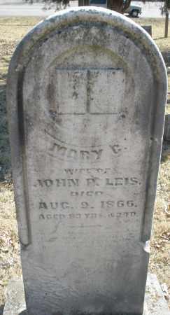 LEIS, MARY - Montgomery County, Ohio   MARY LEIS - Ohio Gravestone Photos