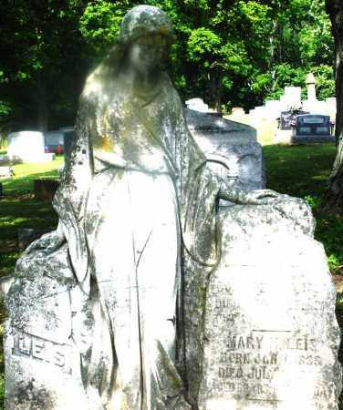 LEIS, MARY M. - Montgomery County, Ohio | MARY M. LEIS - Ohio Gravestone Photos
