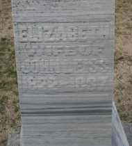 LEISS, ELIZABETH - Montgomery County, Ohio | ELIZABETH LEISS - Ohio Gravestone Photos