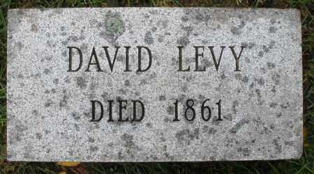 LEVY, DAVID - Montgomery County, Ohio | DAVID LEVY - Ohio Gravestone Photos