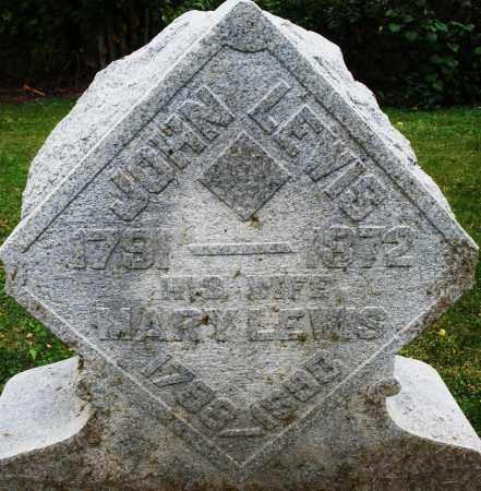 LEWIS, MARY - Montgomery County, Ohio | MARY LEWIS - Ohio Gravestone Photos