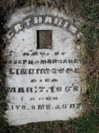 LINDENMUTH, CATHARINE - Montgomery County, Ohio   CATHARINE LINDENMUTH - Ohio Gravestone Photos