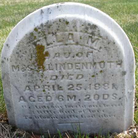 LINDENMUTH, ELLA M. - Montgomery County, Ohio | ELLA M. LINDENMUTH - Ohio Gravestone Photos