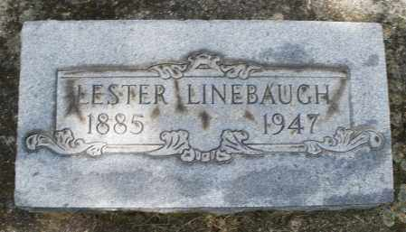 LINEBAUGH, LESTER - Montgomery County, Ohio | LESTER LINEBAUGH - Ohio Gravestone Photos