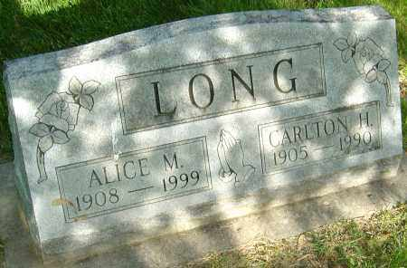LONG, ALICE M - Montgomery County, Ohio | ALICE M LONG - Ohio Gravestone Photos