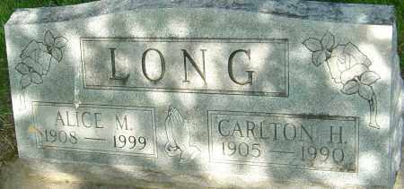 LONG, ALICE M - Montgomery County, Ohio | ALICE M LONG - Ohio Gravestone Photos
