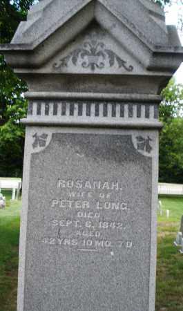 LONG, ROSANA H. - Montgomery County, Ohio | ROSANA H. LONG - Ohio Gravestone Photos