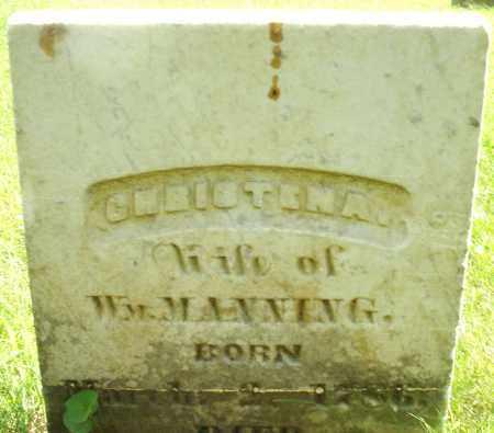 MANNING, CHRISTENA - Montgomery County, Ohio | CHRISTENA MANNING - Ohio Gravestone Photos