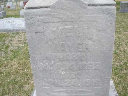 MAYER, AMELIA - Montgomery County, Ohio | AMELIA MAYER - Ohio Gravestone Photos