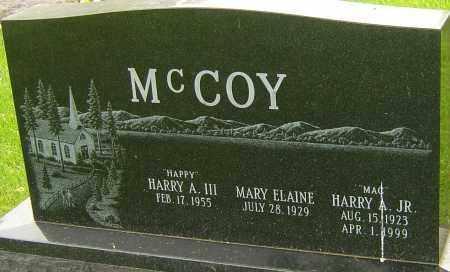 MCCOY JR., HARRY A - Montgomery County, Ohio   HARRY A MCCOY JR. - Ohio Gravestone Photos