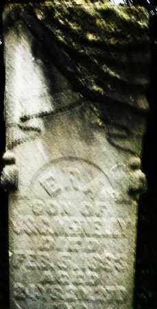 MCNELLY, E. - Montgomery County, Ohio   E. MCNELLY - Ohio Gravestone Photos