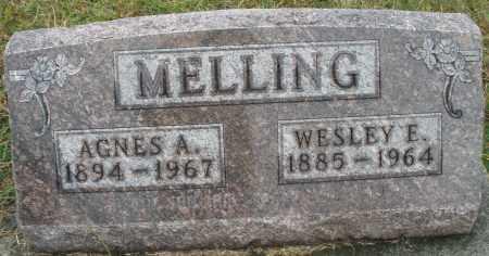 MELLING, AGNES A. - Montgomery County, Ohio | AGNES A. MELLING - Ohio Gravestone Photos