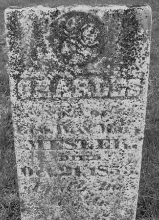 MESTER, CHARLES - Montgomery County, Ohio   CHARLES MESTER - Ohio Gravestone Photos