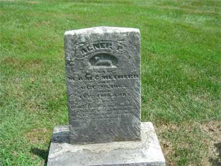 METHOD, ABNER P - Montgomery County, Ohio | ABNER P METHOD - Ohio Gravestone Photos