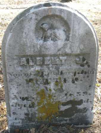 METTER, ALBERT J. - Montgomery County, Ohio | ALBERT J. METTER - Ohio Gravestone Photos