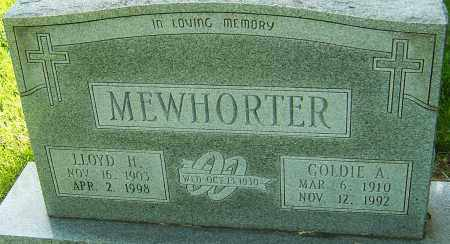 MEWHORTER, LLOYD H - Montgomery County, Ohio   LLOYD H MEWHORTER - Ohio Gravestone Photos