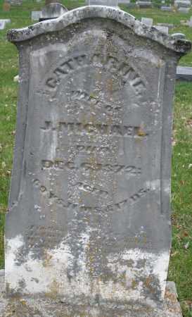 MICHAEL, CATHARINE - Montgomery County, Ohio   CATHARINE MICHAEL - Ohio Gravestone Photos