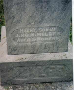 MILLER, HARRY - Montgomery County, Ohio | HARRY MILLER - Ohio Gravestone Photos