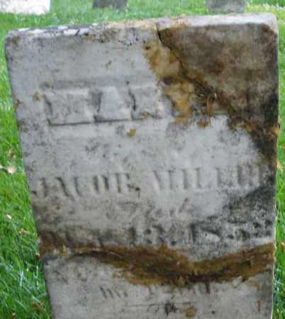 MILLER, MARY - Montgomery County, Ohio | MARY MILLER - Ohio Gravestone Photos
