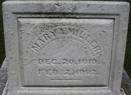 MILLER, MARY A. - Montgomery County, Ohio   MARY A. MILLER - Ohio Gravestone Photos