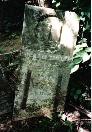 MILLER, MICHAEL - Montgomery County, Ohio   MICHAEL MILLER - Ohio Gravestone Photos