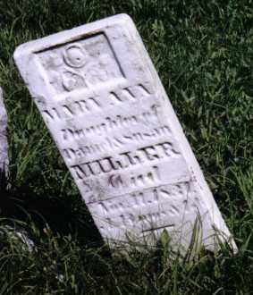 MILLER, MARY ANN - Montgomery County, Ohio | MARY ANN MILLER - Ohio Gravestone Photos