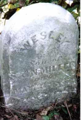 MILLER, WESLEY - Montgomery County, Ohio   WESLEY MILLER - Ohio Gravestone Photos