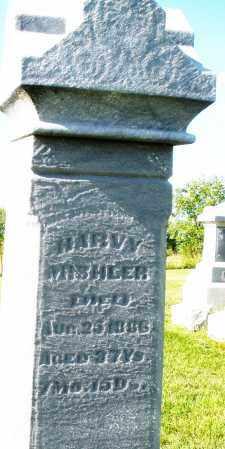 MISHLER, HARVY - Montgomery County, Ohio | HARVY MISHLER - Ohio Gravestone Photos