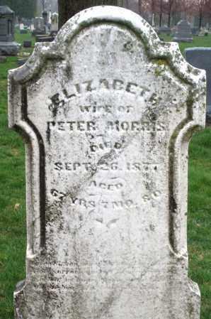 MORRIS, ELIZABETH - Montgomery County, Ohio   ELIZABETH MORRIS - Ohio Gravestone Photos