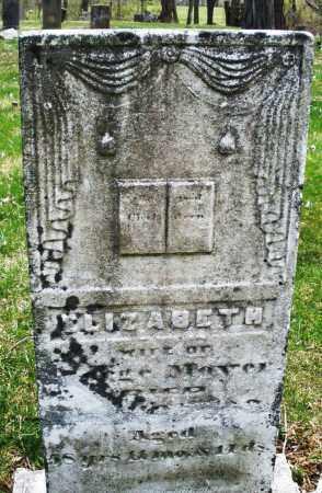 MOYER, ELIZABETH - Montgomery County, Ohio   ELIZABETH MOYER - Ohio Gravestone Photos