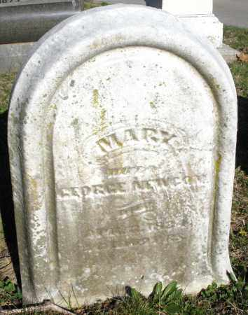 NEWCOM, MARY - Montgomery County, Ohio | MARY NEWCOM - Ohio Gravestone Photos